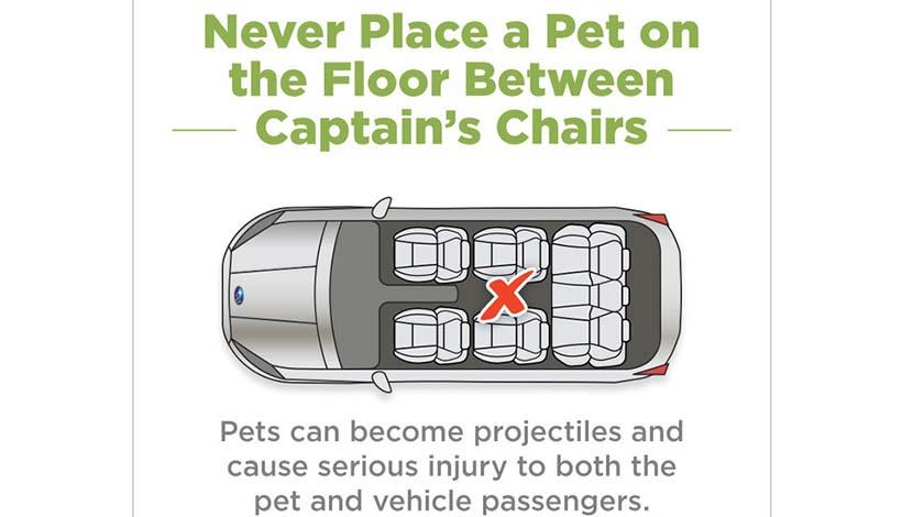Guía de seguridad para el perro en las SUVs familiares