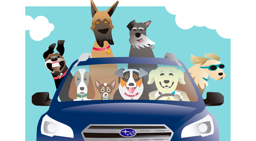 Tips para viajar con tu mascota segura