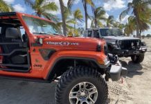 Jeep Wrangler y Jeep Gladiator 305
