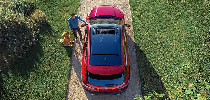 ¿Cómo preparar tu auto para la primavera?