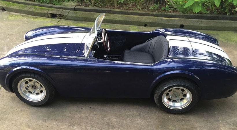 Shelby Cobra Junior